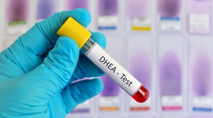 Does DHEA Promote Fertility?