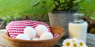 When & How to Introduce Egg for Babies